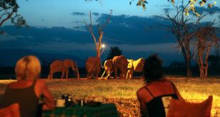 Tsavo East und Tsavo West Nationalpark