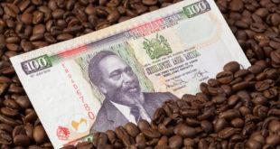 Währung und Bezahlen in Kenia