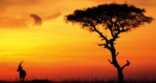 Klima in Kenia